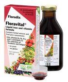 Floradix Floravital 250ml