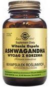 SOLGAR Ashwagandha wyciąg z korzenia (Witania Ospała) x 60 kapsułek